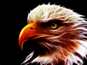 This eagle is the cousin to the eagle at www.newboldessential.com 'Resolute and Watchful Since June 20, 1782